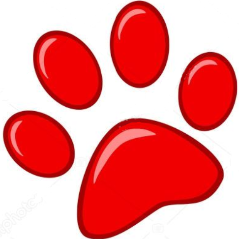 renseignement comportementaliste chien